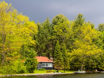 Miramichi River Cottage Rentals